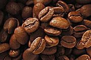 認識三大洲的咖啡豆